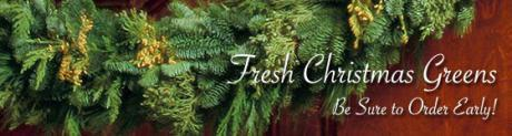 fresh_christmas_greens_7546.jpg
